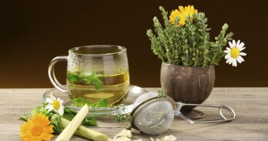 I preziosi e utili composti delle piante per il nostro benessere